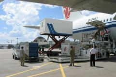 Internal, international freight air transportation