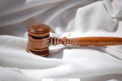 Представительство интересов клиентов в судах по налоговым спорам
