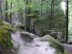 Экскурсии. Скалы Довбуша. Карпаты