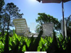 Организация оздоровительного отдыха на базе санаториев