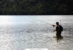 Рыболовство в реках, озерах, водохранилищах, прудах