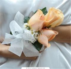 Свадебные фото Черновцы