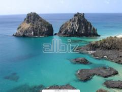 Пляжный отдых: Турция, Египет, ОАЭ, Тайланд, острова(Доминикана, Куба, Шри Ланка, Бали).