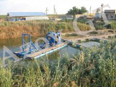 Cleaning of fish ponds