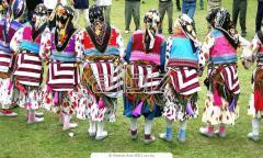 Выступления фольклорных, народно-обрядовых