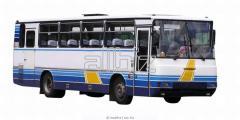 Автобусные перевозки в Германию