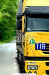 Organization of international transport Ukraine