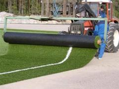 Laying of the Iskustvenny grass