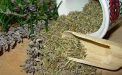 Очищение лимфы травами