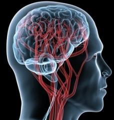 Магнитно-резонансная томография головного мозга с