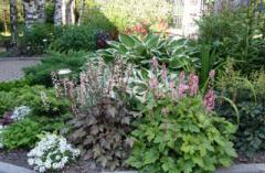Gardening of a garden