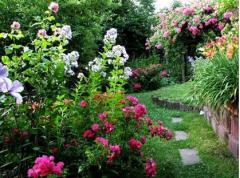 Озеленение сада, Уход за садом , Днепропетровск ,