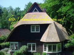 住宅,别墅和其它设施建造