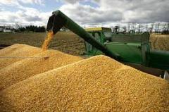 Перевозка сельхозпродукции. Украина.