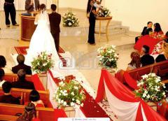 Оформление помещений живыми цветами Белая Церковь