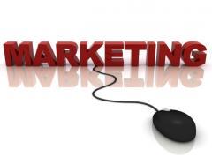 Услуги консультантов по маркетинговым стратегиям.