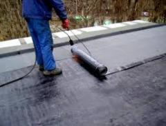 Repair of a flat roof of garage in Chernihiv