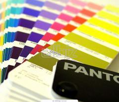 Подбор фирменной цветовой гаммы