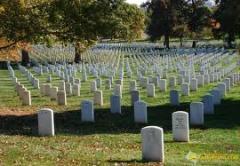 Места на кладбище