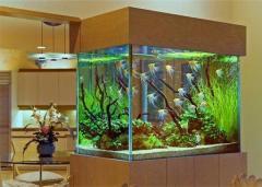 Обслуживание аквасистем