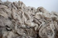 We accept wool for processing