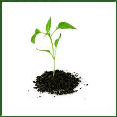 Средствами защиты растений, поставка, обеспечение,