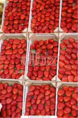 Purchase of berries, Purchase of berries,