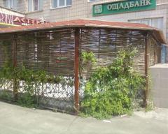 Interior design of restaurants in the Ukrainian