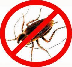 Дезинсекция. Уничтожение прусаков и тараканов в 2-хкомнатной квартире.