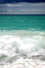 Отдых и оздоровление для всей семьи у моря