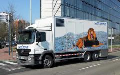 Express cargo delivery. Full range of logistic