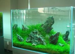 Изготовление аквариумов, аквариум поз заказ,