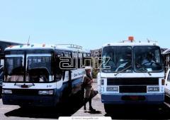 Экскурсии автобусные