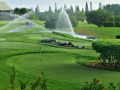 Systems of watering, autowatering and irrigation