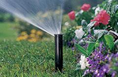 Drop watering of flower beds
