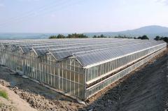 Irrigation of greenhouses in Ukraine