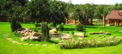 Landscaping | Gardening and improvemen