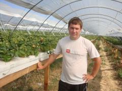 Консультационные услуги по технологиям выращивания земляники.
