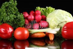 Комплектация и поставка продуктов питания