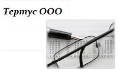 Анализ ведения бухгалтерского и налогового учета