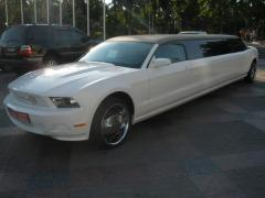 Hire of limousines Kiev. Wedding limousines
