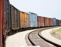 Услуги железнодорожных перевозок контейнерных грузов