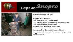 Repair of induction electric motors of domestic