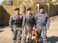 Охрана и защита