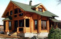La construcción de las casas del árbol