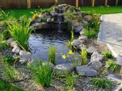 Садовые пруды