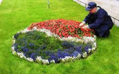 Уход за цветниками (прополка, подкормка)