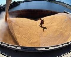 Накопление и перевалка зерновых грузов