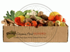 Production of boxes and container for fruit,