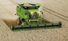 Збирання урожаю зернозбиральними комбайнами...